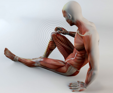 Ruptura musculara